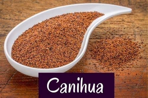 Pseudogetreide Canihua