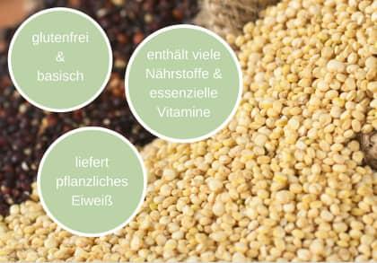 Quinoa Vorteile